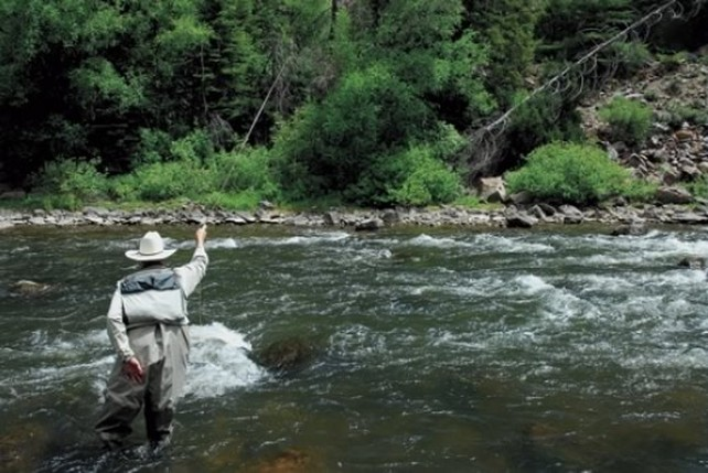 Fly Fishing During the Stonefly Hatch in Colorado
