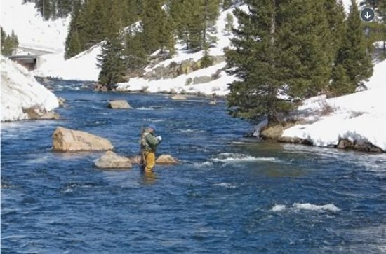 Fly Fishing in Colorado Pocket Water by Pat Dorsey