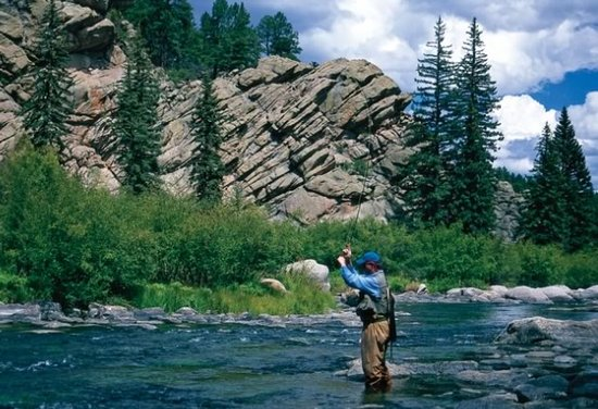 Fly Fishing in Elevenmile Canyon by Pat Dorsey