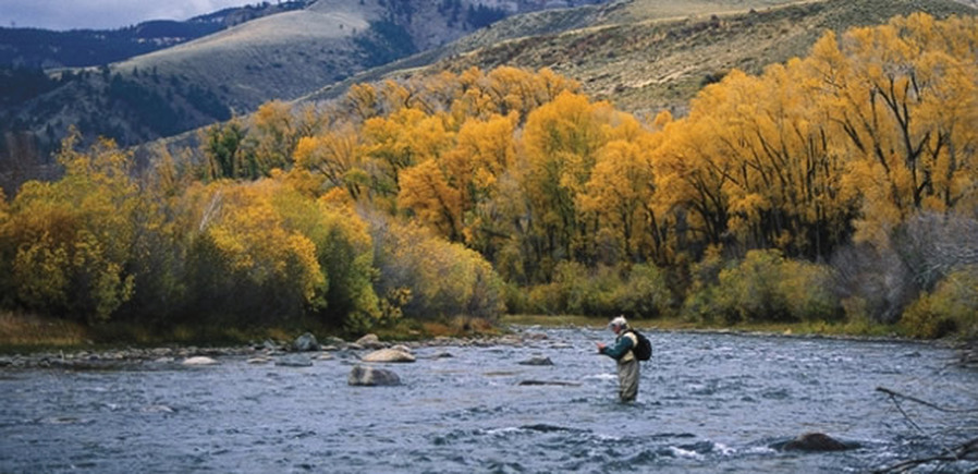 Small-Stream Fly Fishing on the Blue River in Colorado by Pat Dorsey
