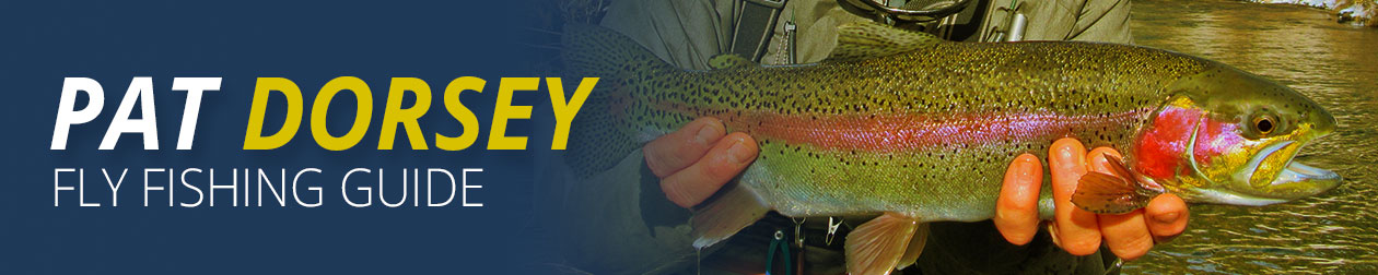 Pat Dorsey - Professional Fly Fishing Guide in Colorado