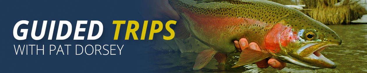 Guided Fly Fishing Trips with Pat Dorsey